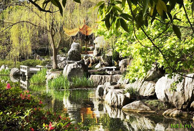 Ancient Chinese Gardens  Shen Yun Digital Projection